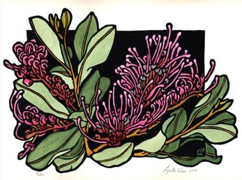 Grevillea clipart #9, Download drawings
