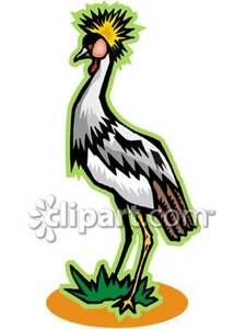 Grey Crowned Crane clipart #14, Download drawings
