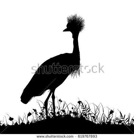 Grey Crowned Crane clipart #8, Download drawings