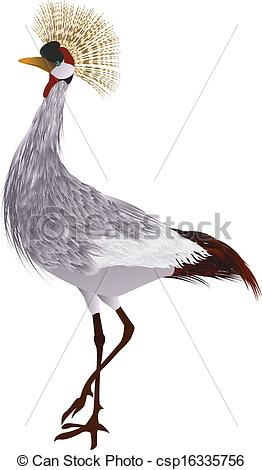 Grey Crowned Crane clipart #13, Download drawings