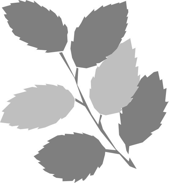 Grey. Leaf clipart #18, Download drawings