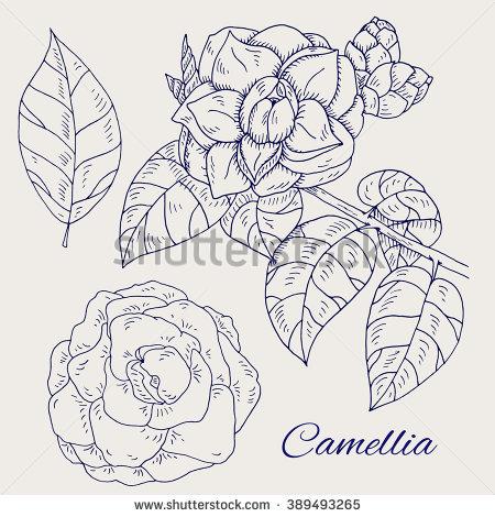 Grey. Leaf coloring #11, Download drawings