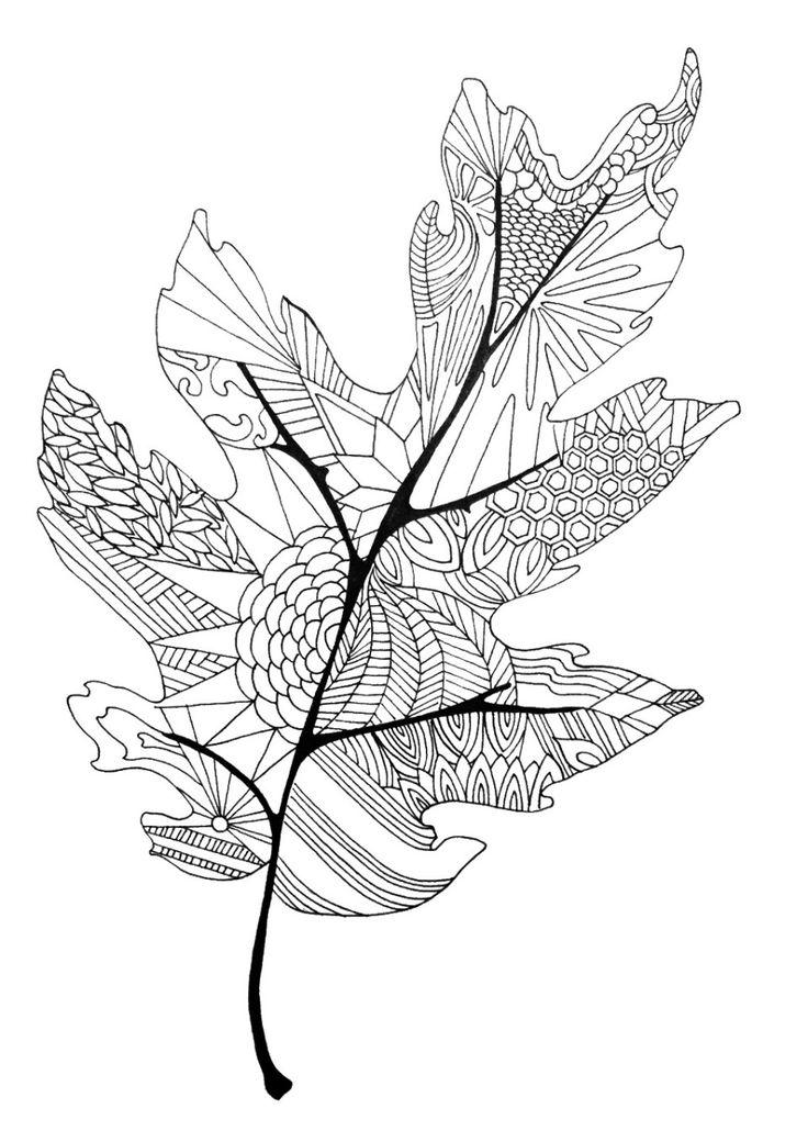 Grey. Leaf coloring #17, Download drawings