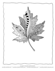 Grey. Leaf coloring #18, Download drawings