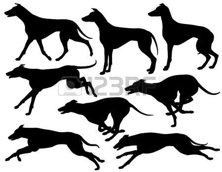Greyhound clipart #10, Download drawings