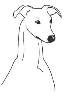 Greyhound clipart #9, Download drawings