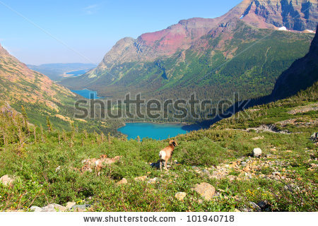 Grinnell Lake coloring #5, Download drawings