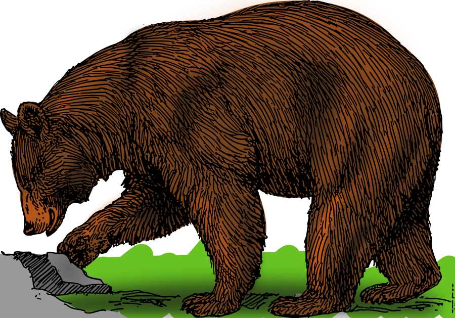 Grizzly Bear clipart #12, Download drawings