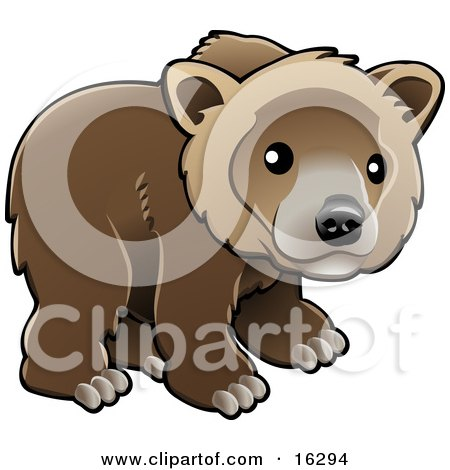 Grizzly Cubs clipart #10, Download drawings