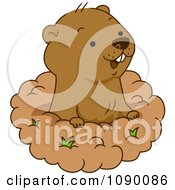 Groundhog clipart #15, Download drawings