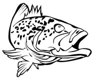 Grouper clipart #14, Download drawings