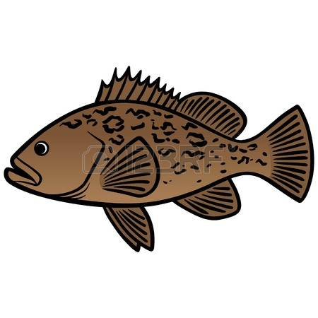 Grouper clipart #5, Download drawings