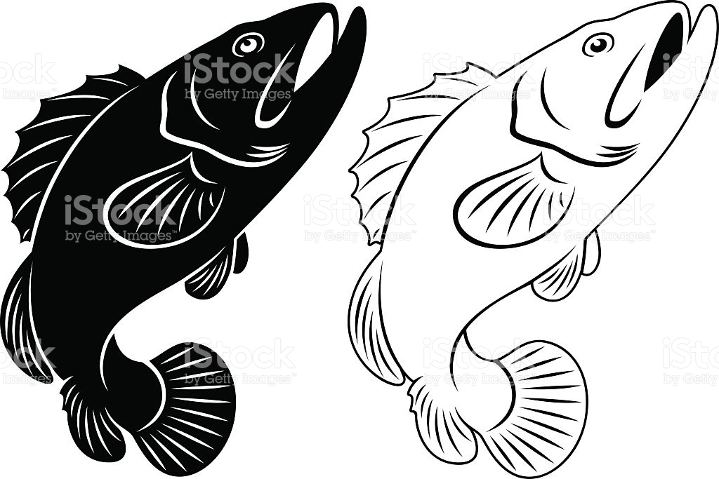 Grouper clipart #1, Download drawings