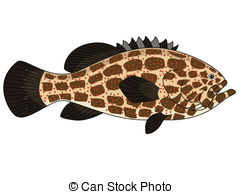 Grouper clipart #6, Download drawings