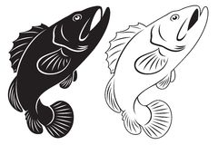 Grouper clipart #18, Download drawings