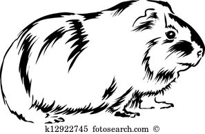 Guinea Pig clipart #15, Download drawings