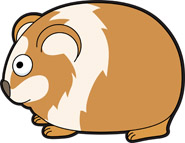Guinea Pig clipart #12, Download drawings