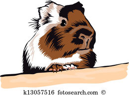 Guinea Pig clipart #10, Download drawings