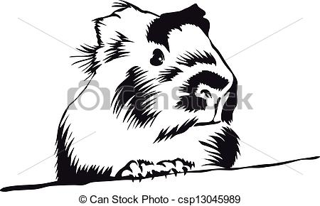 Guinea Pig clipart #8, Download drawings