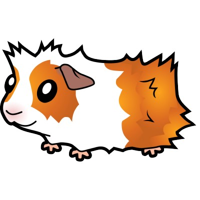 Guinea Pig clipart #14, Download drawings