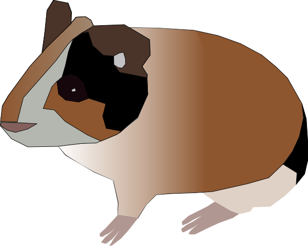 Guinea Pig clipart #16, Download drawings