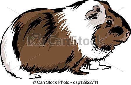Guinea Pig clipart #13, Download drawings