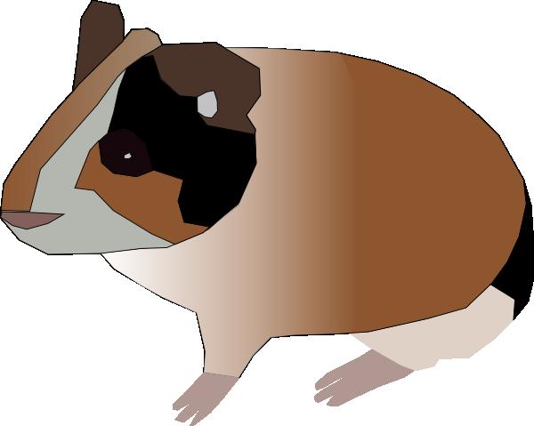 Guinea Pig svg #19, Download drawings