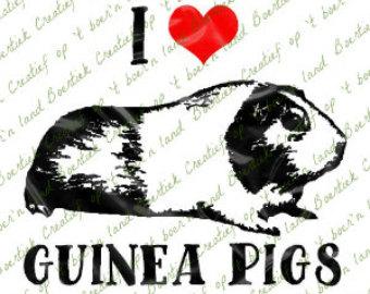 Guinea Pig svg #5, Download drawings