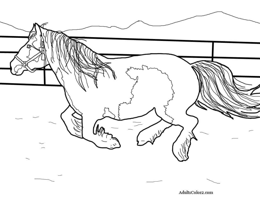 Gypsy coloring #12, Download drawings