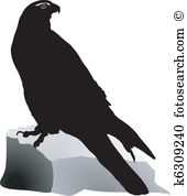 Gyrfalcon clipart #19, Download drawings