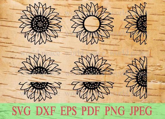 half sunflower svg #919, Download drawings