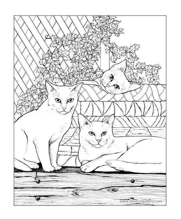 Hamilton coloring #3, Download drawings