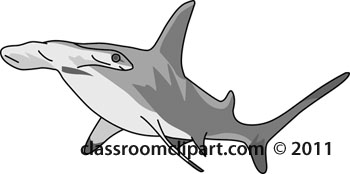 Hammerhead Shark clipart #13, Download drawings
