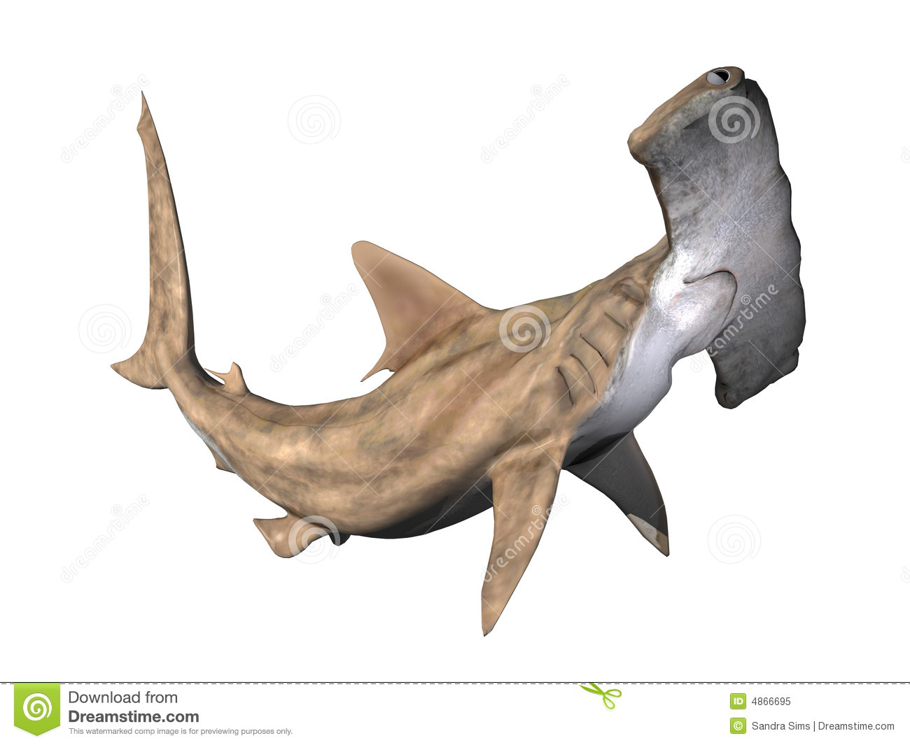 Hammerhead Shark clipart #11, Download drawings