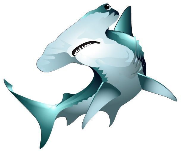 Hammerhead Shark clipart #10, Download drawings