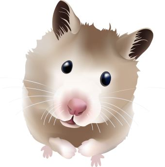 Hamster clipart #19, Download drawings