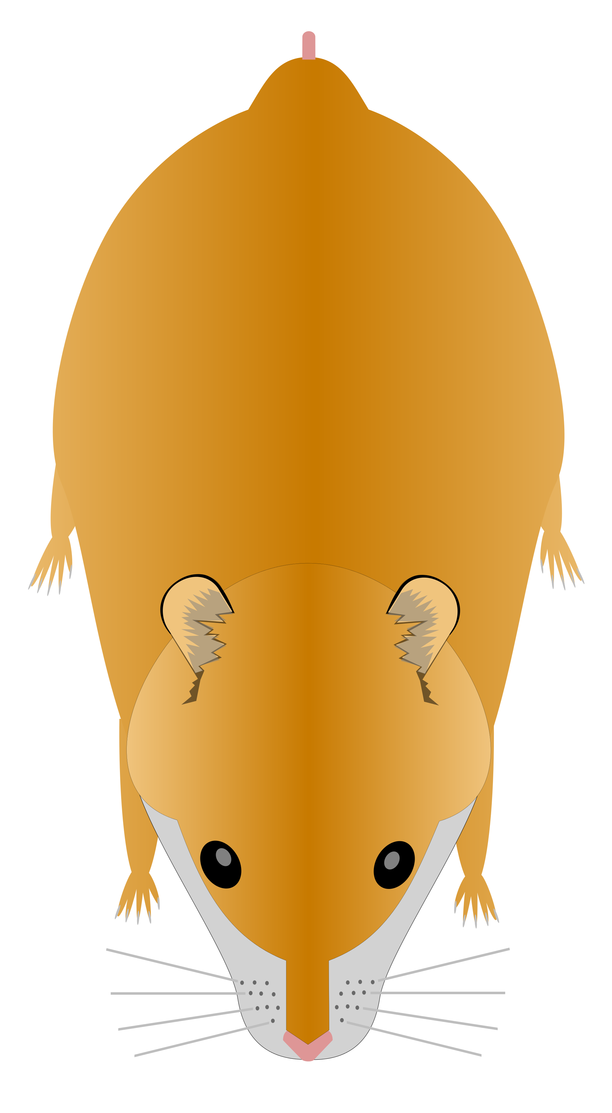 Hamster svg #8, Download drawings