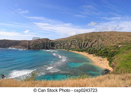 Hanauma Bay clipart #13, Download drawings