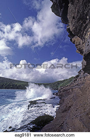 Hanauma Bay clipart #11, Download drawings