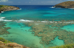 Hanauma Bay clipart #17, Download drawings