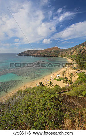 Hanauma Bay clipart #14, Download drawings