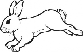 Hare clipart #3, Download drawings