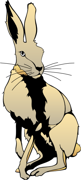 Hare clipart #5, Download drawings
