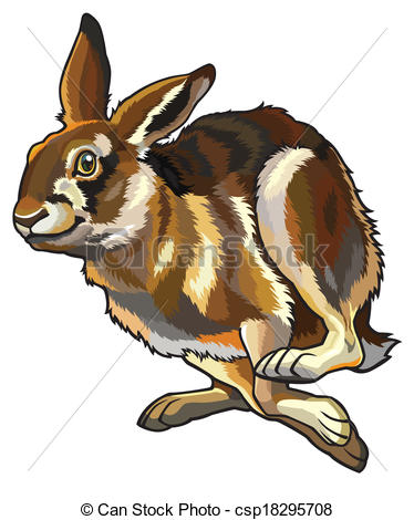 Hare clipart #7, Download drawings