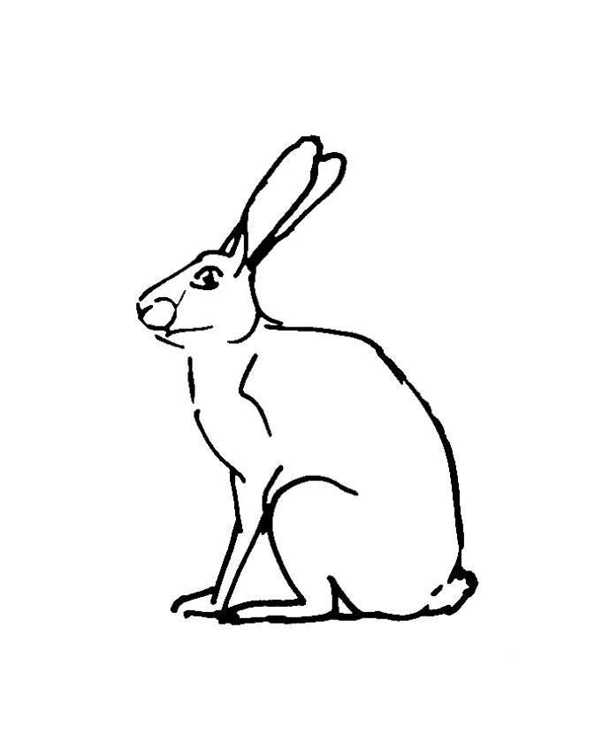 Hare coloring download hare coloring for Snowshoe hare coloring page