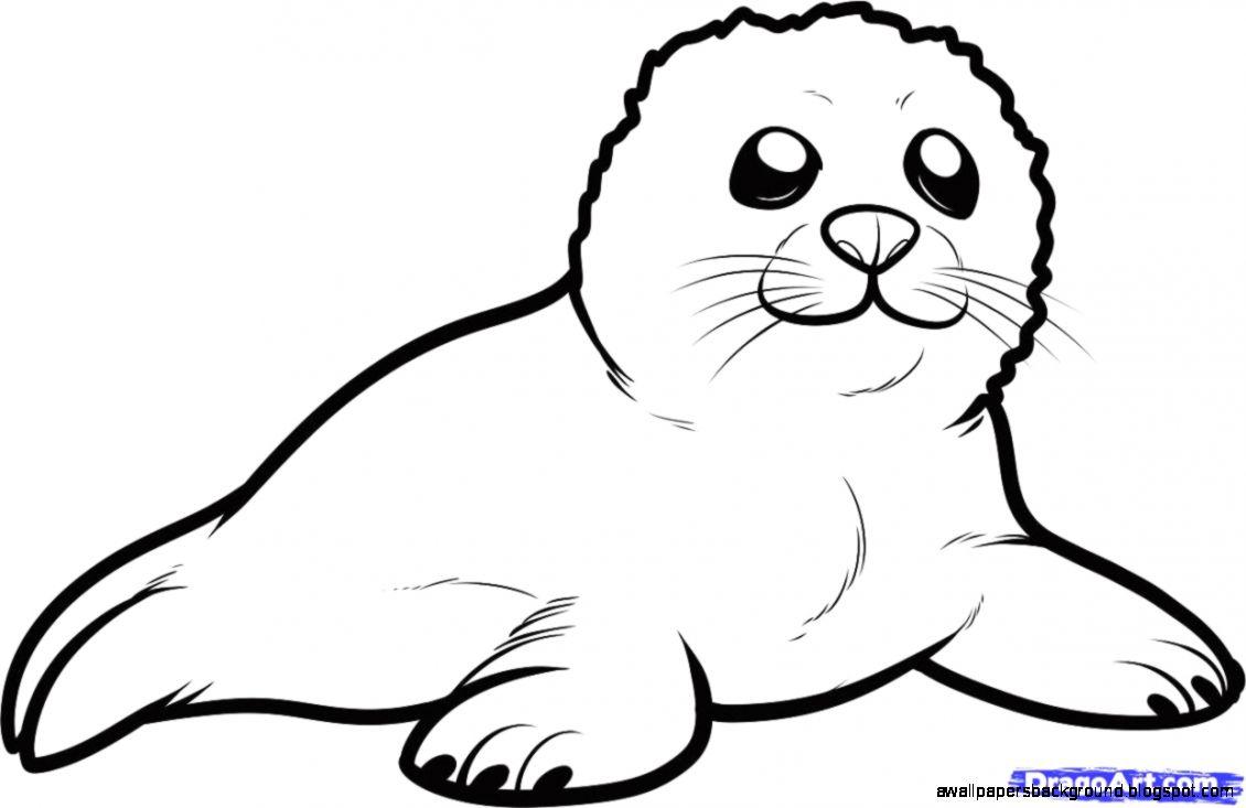 Harp Seal clipart #3, Download drawings