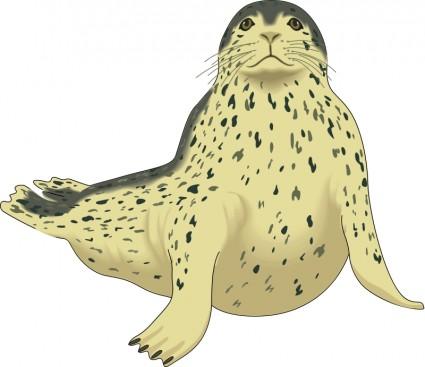Harp Seal clipart #12, Download drawings