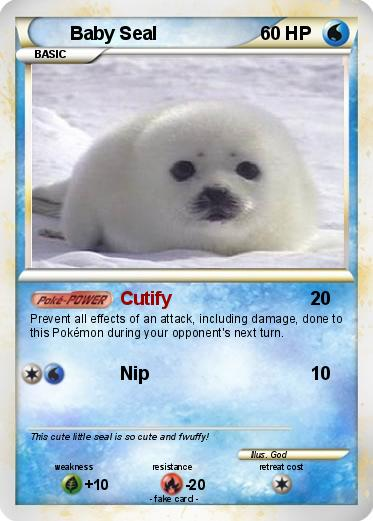 Harp Seal svg #11, Download drawings