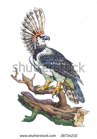 Harpy Eagle clipart #7, Download drawings