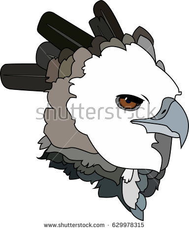 Harpy Eagle clipart #4, Download drawings